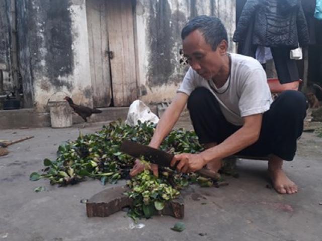 Chờ bồi thường oan sai, 'tử tù' Hàn Đức Long ngập trong nợ nần