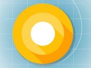 Công nghệ thông tin - Android O bản Developer Preview trình làng với tính năng tiết kiệm pin tối đa