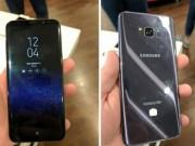 Dế sắp ra lò - Trên tay Galaxy S8 Plus màu xám, trợ lý ảo Bixby