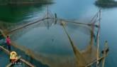 Nghề săn cá quý ở Sông Gâm