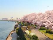Vi vu ở Quần thể Tokyo Skytree Town  & amp; thưởng thức các món ngon