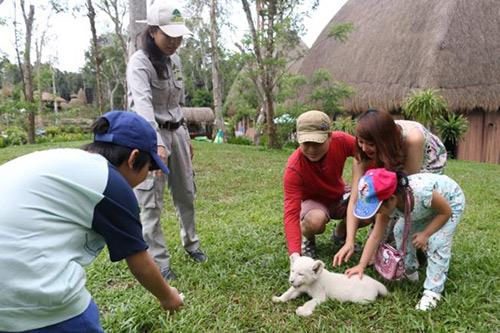 Vinpearl Safari đón nhiều thú non quý hiếm chào đời - 3