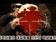 Thế giới - Triều Tiên tung video bắn tỉa diệt hàng loạt binh sĩ Mỹ