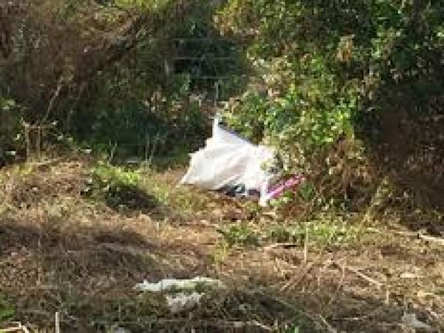 Bắt nghi phạm vụ thi thể phụ nữ bị trói tay, váy lật ngược - ảnh 2