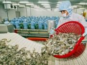 Thị trường - Tiêu dùng - 'Thương lái Trung Quốc xúi dân bỏ rau câu vào tôm'