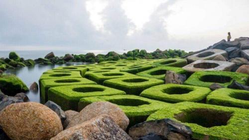 Kinh nghiệm du lịch Phú Yên: Những điểm đến hấp dẫn nhất - 5