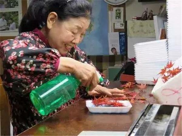 Nhờ bán...lá cây, các cụ bà Nhật Bản kiếm được 52 tỷ đồng/năm - 8