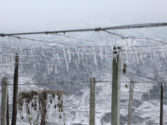 Không khí lạnh tràn về, Mẫu Sơn có thể xuống -1 độ C