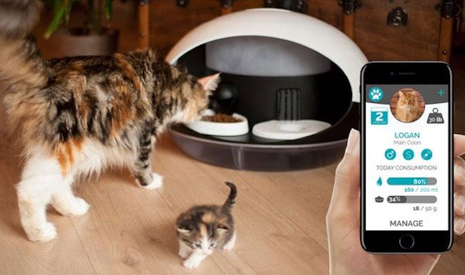 """Máy cho thú cưng ăn thông minh gây """"sốt"""" tại CES 2018 - 1"""