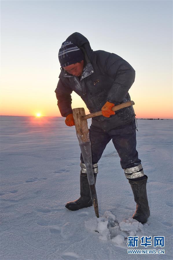 Du khách đổ xô chiêm ngưỡng bức tường cá lạ lùng giữa hồ băng - 7