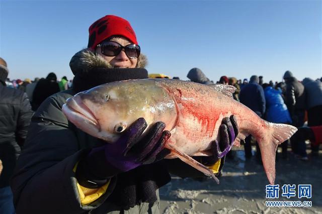 Du khách đổ xô chiêm ngưỡng bức tường cá lạ lùng giữa hồ băng - 10