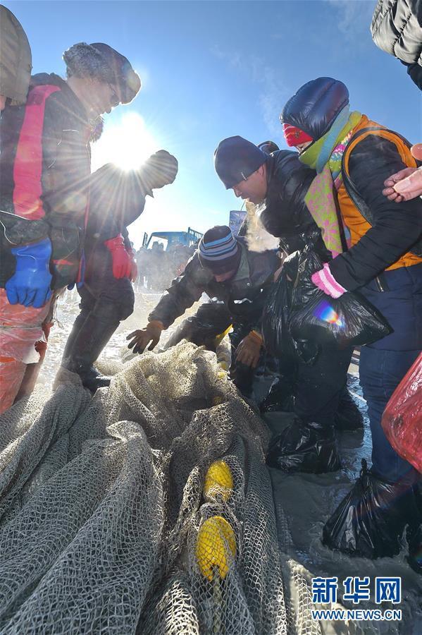 Du khách đổ xô chiêm ngưỡng bức tường cá lạ lùng giữa hồ băng - 8