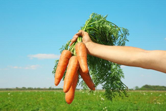 10 thực phẩm hằng ngày giúp cơ thể giải độc tự nhiên - 2