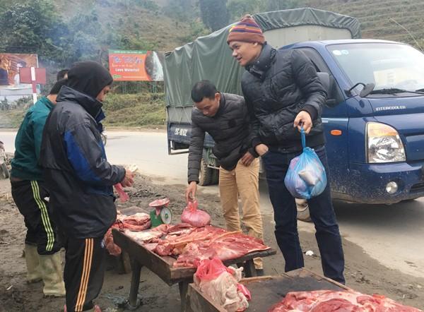 Lào Cai: Trâu, nghé chết la liệt, mổ bán ngay vệ đường - 5