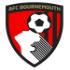 Chi tiết Bournemouth - Arsenal: Bảo vệ thành quả mong manh (KT) 17