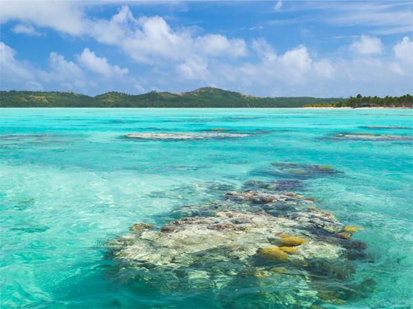 """""""Lịm tim"""" ngắm những bãi biển nước sạch nhất thế giới - 4"""