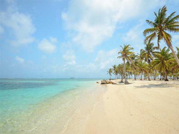 """""""Lịm tim"""" ngắm những bãi biển nước sạch nhất thế giới - 13"""