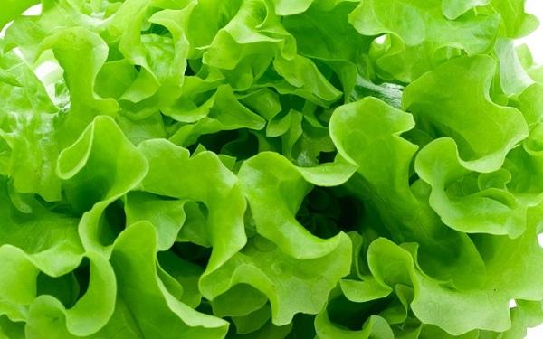 Loại rau giúp ăn ngon, ngủ tốt, trừ mụn nhọt