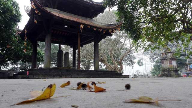 Ít người biết, ngay gần Hà Nội đã có rừng phong lá đỏ - 10