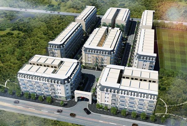 Sôi động thị trường BĐS những ngày đầu năm: Mở bán dự án liền kề Green Park - 2