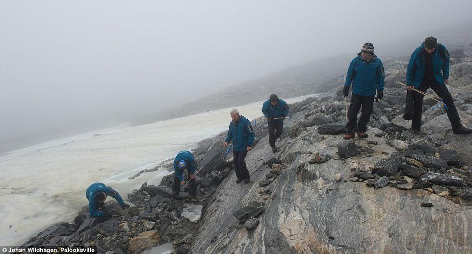 Băng tan để lộ 2.000 vật quý trên dãy núi cao nhất Na Uy