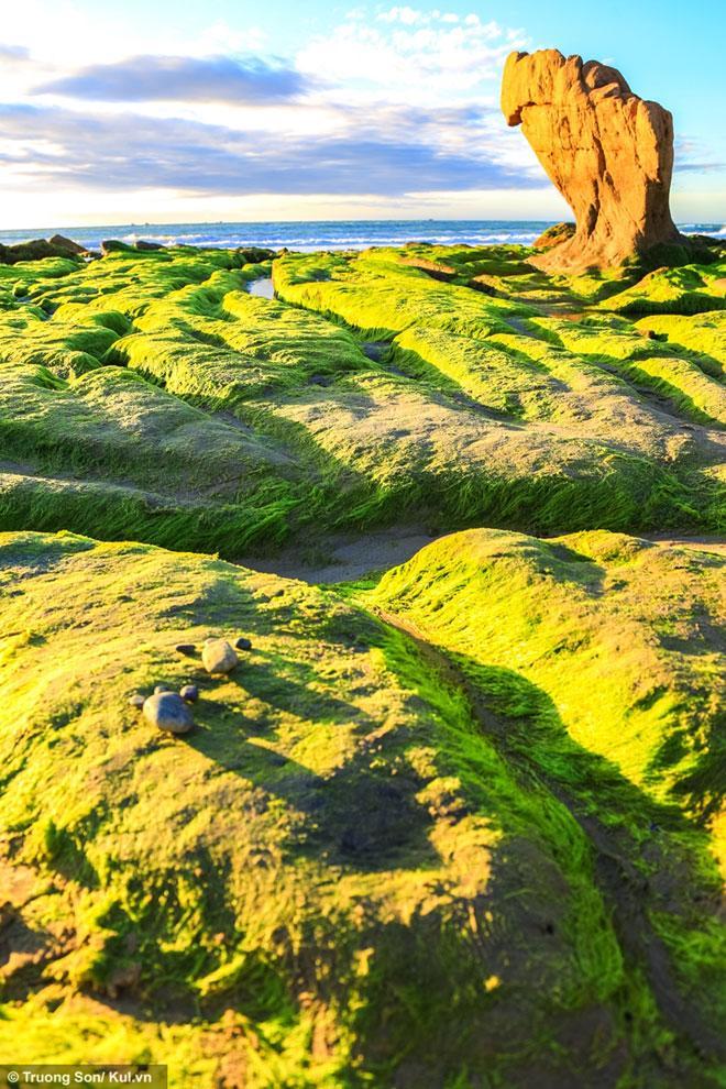 Xách balo lên và đi ngay Cổ Thạch ngắm mùa rêu xanh phủ lên đá - 2