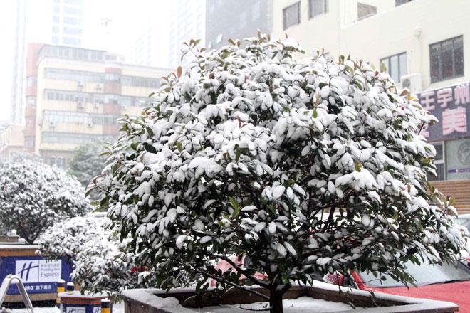 Ngắm tuyết rơi tuyệt đẹp ở Thường Châu trước trận chung kết U23 VN - U23 Uzbekistan - 4