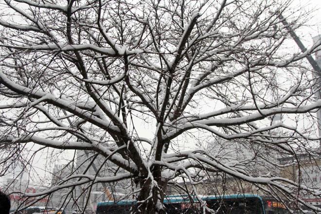 Ngắm tuyết rơi tuyệt đẹp ở Thường Châu trước trận chung kết U23 VN - U23 Uzbekistan - 7