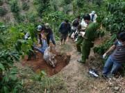 An ninh Xã hội - Giết người, cướp tài sản chôn xác phi tang chấn động Lâm Đồng