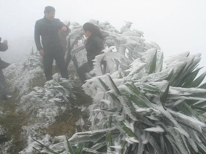 Du khách thích thú ngắm tuyết rơi trên đỉnh Mẫu Sơn - 5