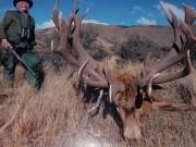 Thế giới - Nam Phi: Đang nhắm bắn sư tử thì bị bắn chết tại chỗ
