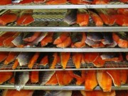 Thị trường - Tiêu dùng - Vì sao Mỹ từ chối nhập khẩu cá tra hun khói?