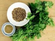 Sức khỏe đời sống - Những tác dụng tuyệt vời của rau mùi ngày Tết