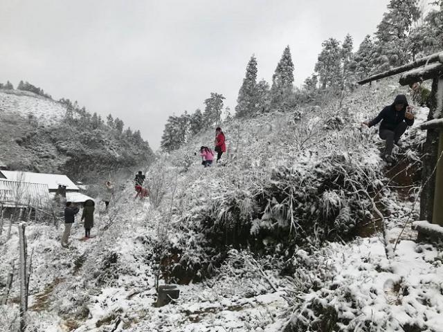 Miền Bắc tiếp tục rét đậm, rét hại dài ngày, vùng núi cao có băng giá
