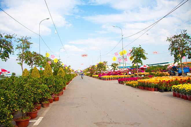 Chợ hoa xuân Bình Điền - Thêm sắc xuân cho khu nam - 4