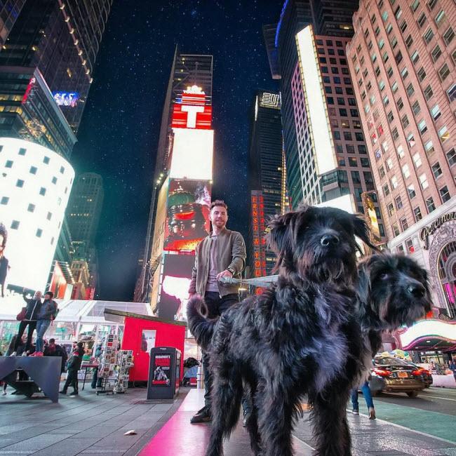 Chàng trai nghỉ việc để đưa cún cưng du ngoạn khắp nước Mỹ - 8