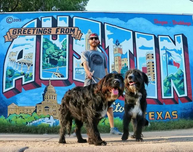 Chàng trai nghỉ việc để đưa cún cưng du ngoạn khắp nước Mỹ - 5