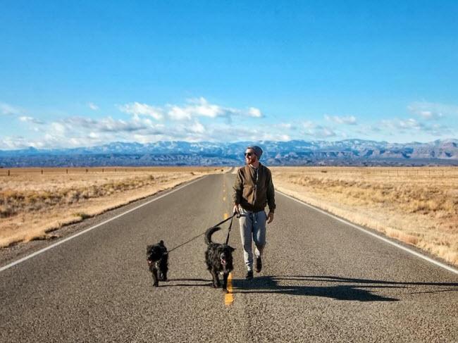 Chàng trai nghỉ việc để đưa cún cưng du ngoạn khắp nước Mỹ - 10