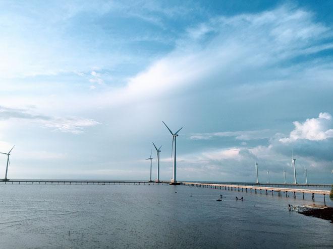 Đến Bạc Liêu để biết ở Việt Nam cũng có cánh đồng quạt gió đẹp như Tây