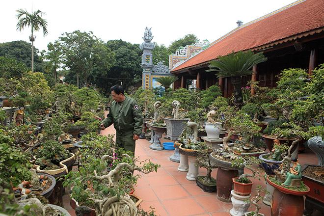 http://image.24h.com.vn/upload/1-2018/images/2018-02-08/1518058525-622-man-nhan-vuon-hoa-giay-bonsai-cua-nguoi-tram-nghe-quai-kiet-a--1--1517792411-width660height440.jpg