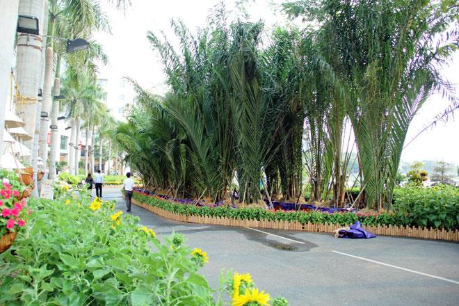 """Hồn quê xuất hiện tại """"khu nhà giàu"""" ở Sài Gòn ngày giáp Tết - 10"""