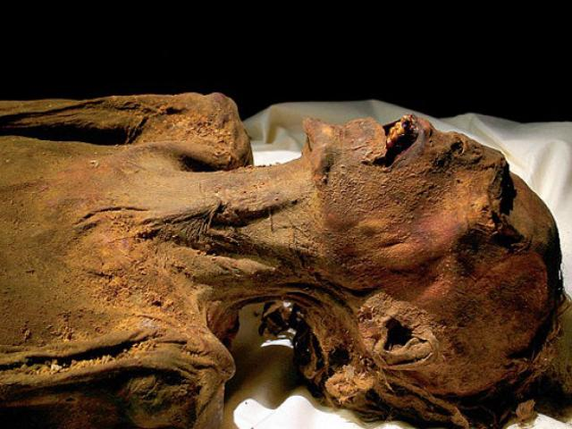 Xác ướp 5.200 năm tuổi có hình xăm quyền lực, cổ nhất thế giới - 3