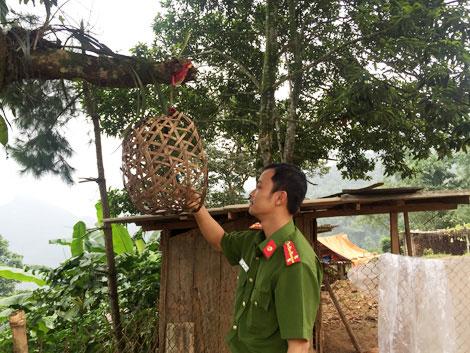 Kinh thiên những vụ thảm án đồng rừng và chiếc lồng gà đón sóng - 2