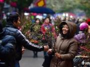 Thị trường - Tiêu dùng - Cận cảnh khu chợ hoa cổ xưa nhất giữa lòng Hà Thành