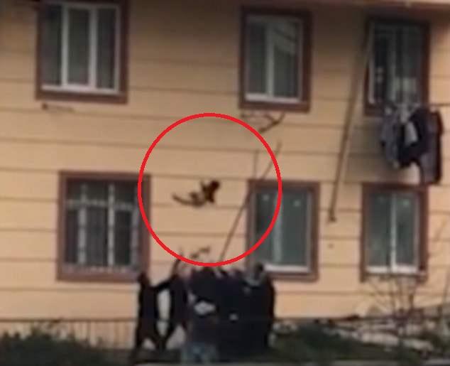 Bé trai Thổ Nhĩ Kỳ rơi từ nhà tầng xuống đất, hàng xóm đứng đỡ - 1
