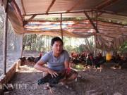 Thị trường - Tiêu dùng - Nuôi gà thả vườn, chàng trai Lâm Đồng lãi 40 triệu đồng mỗi tháng