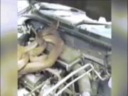 Phi thường - kỳ quặc - Thấy tiếng động lạ trong xe, phát hiện điều đáng sợ bên trong