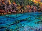 Du lịch - Lịm tim trước thiên đường ở hồ Ngũ Hoa ở Cửu Trại Câu