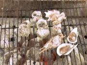 Ẩm thực - Tuyệt chiêu pha nước chấm ốc ngon khó cưỡng, ăn một lần nhớ mãi