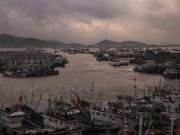 Thế giới - Tàu cá Trung Quốc lộng hành (*): Vét cạn biển Tây Phi